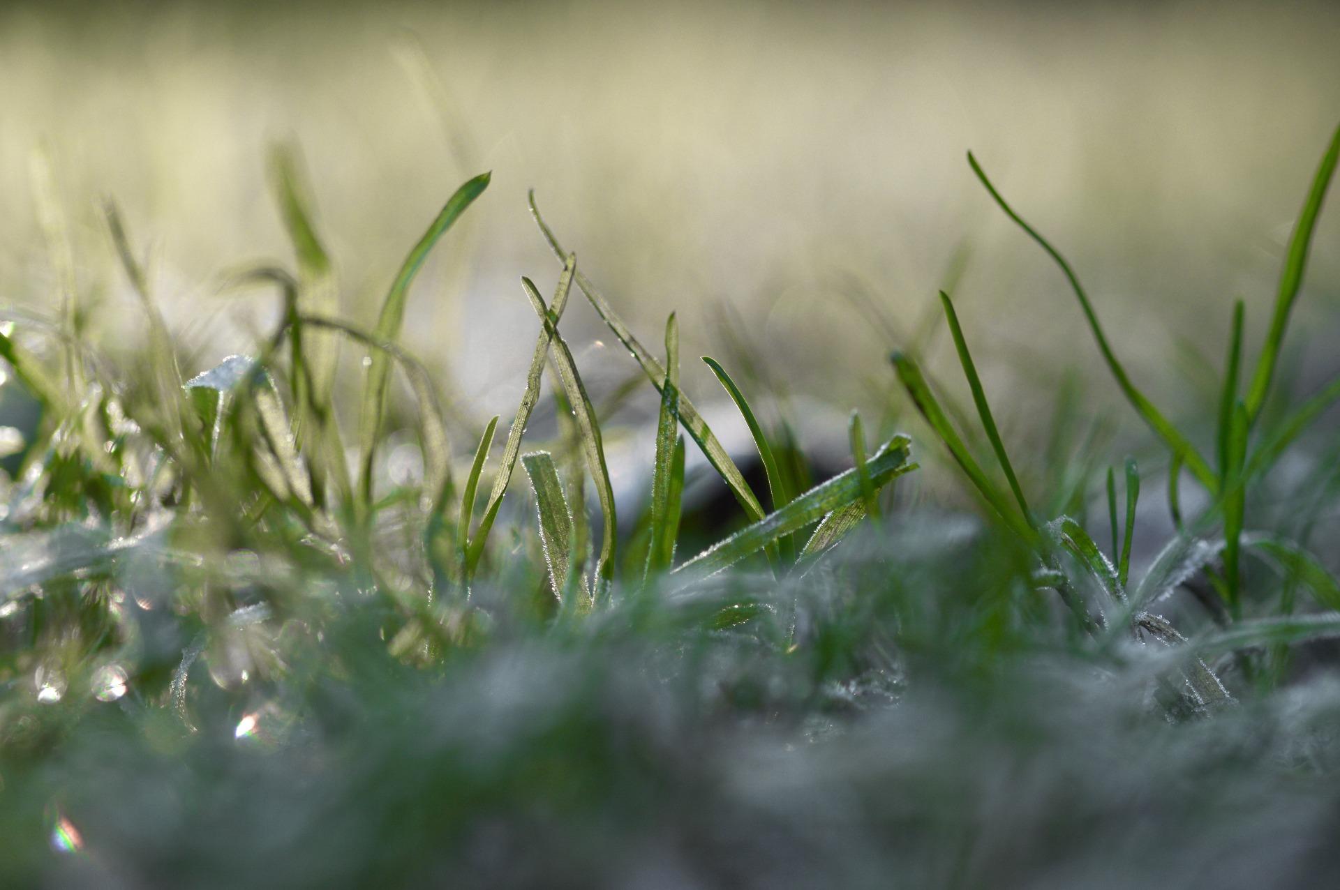 Sprinkler System Winterization Services | CJ Outdoor Lighting & Sprinkler Systems